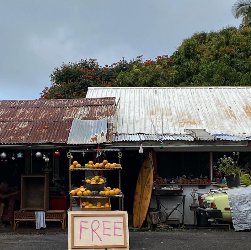 ハワイ島 Freeフルーツスタンド